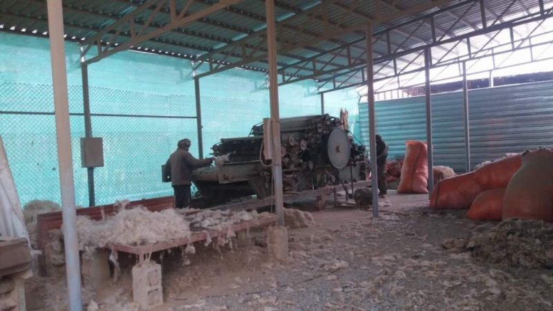 AfghanWidows3-20171226